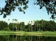 Orange Tree Golf and Country Club Dr Phillips